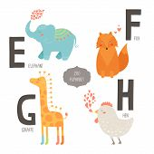 Cute Vector Zoo Alphabet