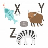 stock photo of x-ray fish  - Cute vector zoo alphabet with cartoon animals isolated on white background - JPG