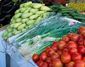 Israel Market Produce: Green Onion, Tomatoes, Zukini, And Eggplant