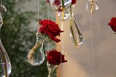 hanging red roses in crystal vases