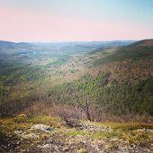 Burnt Meadow Mountain