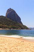 Mountain Sugarloaf  Red Beach (praia Vermelha) Doves, Rio De Janeiro