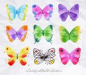 Set watercolor butterfly