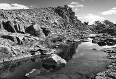 pic of oasis  - A beautiful oasis in rural outback Australia in black and white - JPG