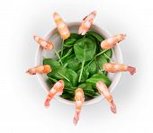 Boiled shrimps and fresh spinach