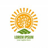 Sun tree logo template