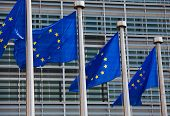 image of european  - European flags in front of the Berlaymont building headquarters of the European commission in Brussels - JPG