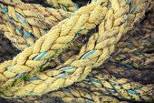 Yellow Nautical Rope, Close-up Background Texture