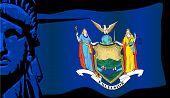 New York Liberty And Flag