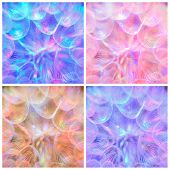 Composition - Colorful Pink Pastel Background - Vivid Abstract Dandelion Flower