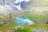 pic of pain-tree  - Lake by the glacier in Torres del Paine National park - JPG