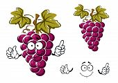 stock photo of tendril  - Ripe purple grape fruit cartoon character with round juicy berries - JPG