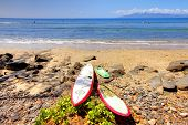 Maui Beach With Surfing Boards Resting On The Sand