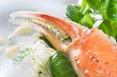 salad with crab