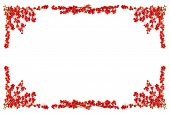 stock photo of winterberry  - Red winterberry Christmas frame with holly berries on branches - JPG