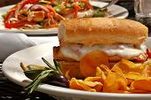 Sandwich de pollo a la parrilla