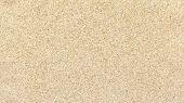 Cork Texture Or Cork Background. Close Up Of Cork Board. Cork Board Wood Surface. Cork Borad For Des poster