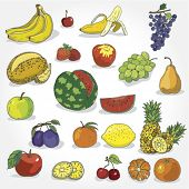 Set of Hand Drawn Colorful Fruit