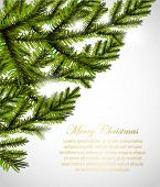 pine tree border design