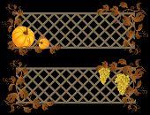 Vector illustration - banner de abóbora e uva