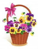 Vector illustration - Pansies in a basket