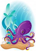 Vector illustration - purple octopus  on the seabed