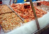 Freah Seafood Counter At Fish Markets
