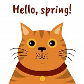 Cute Cartoon Cat Icon. Hello, Spring. Isolated Illustration On White Background poster
