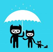 stock photo of rain-drop  - Cats in the Rain - JPG