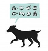 Dog supplies icons set. Vector illustration.