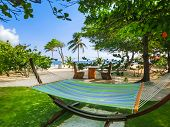 The Resting Area At The Beach With Hammock At Sunny Day At Haiti poster