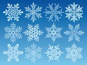 icon set of 12 different snowflakes