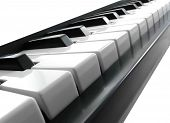 Piano keys  on the white background.