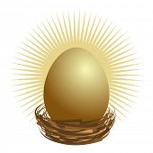 foto of nest-egg  - Financial golden nest egg concept - JPG