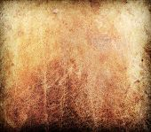 grunge leather texture used as background.