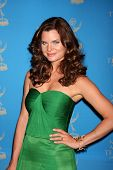 LOS ANGELES - JUN 17:  Heather Tom arriving at the 38th Annual Daytime Creative Arts & Entertainment Emmy Awards at Westin Bonaventure Hotel on June 17, 2011 in Los Angeles, CA