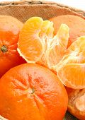 stock photo of tangelo  - tangerines with sections - JPG