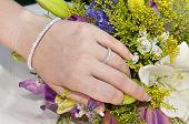 Beautiful Woman Hand