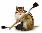Funny Chipmunk Hold Paint Brush
