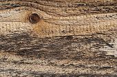 Wood Texture With Knot