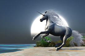 picture of bucking bronco  - A magical white unicorn prances onto a beach at the time of the full moon rising - JPG