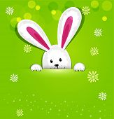 picture of rabbit hole  - Easter bunny looking out a green background - JPG