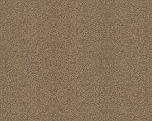 120 Grit Sandpaper Background