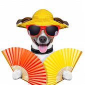 image of waving hands  - summer dog with two hand fans waving - JPG