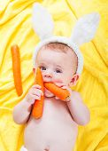 boy with a carrot in his hand