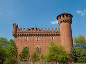 Medieval Castle Turin