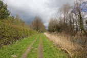 Towpath In Springtime
