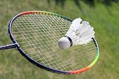 stock photo of shuttlecock  - Badminton shuttlecocks on racket  - JPG