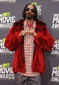 LOS ANGELES - APR 14:  Snoop Dogg arrives to the Mtv Movie Awards 2013  on April 14, 2013 in Culver City, CA.