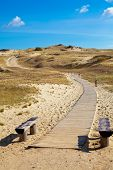 Walking Path At Curonion Spit